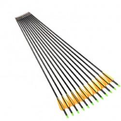 Flechas de Alumino 29 Pulgadas